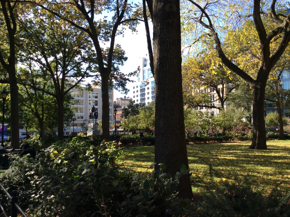 In Union Park, NYC, facing south, photo 2014 Amy Cools