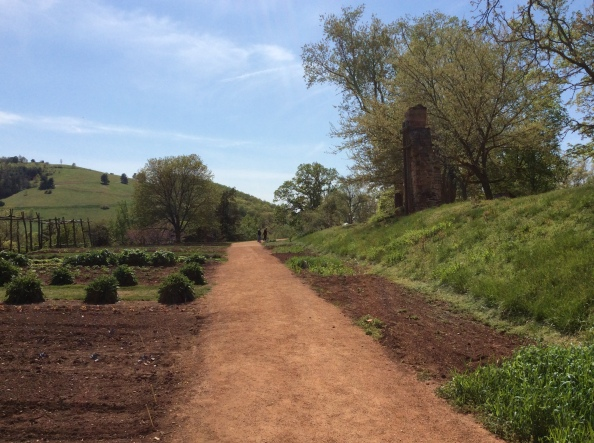 Mulberry Row path and gardens at Monticello, photo 2015 by Amy Cools