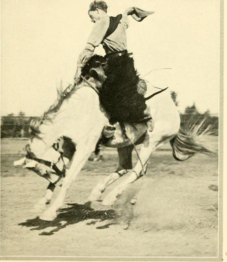 Let'er buck, 1921 by Charles Wellington Furlong, public domain via Wikimedia Commons