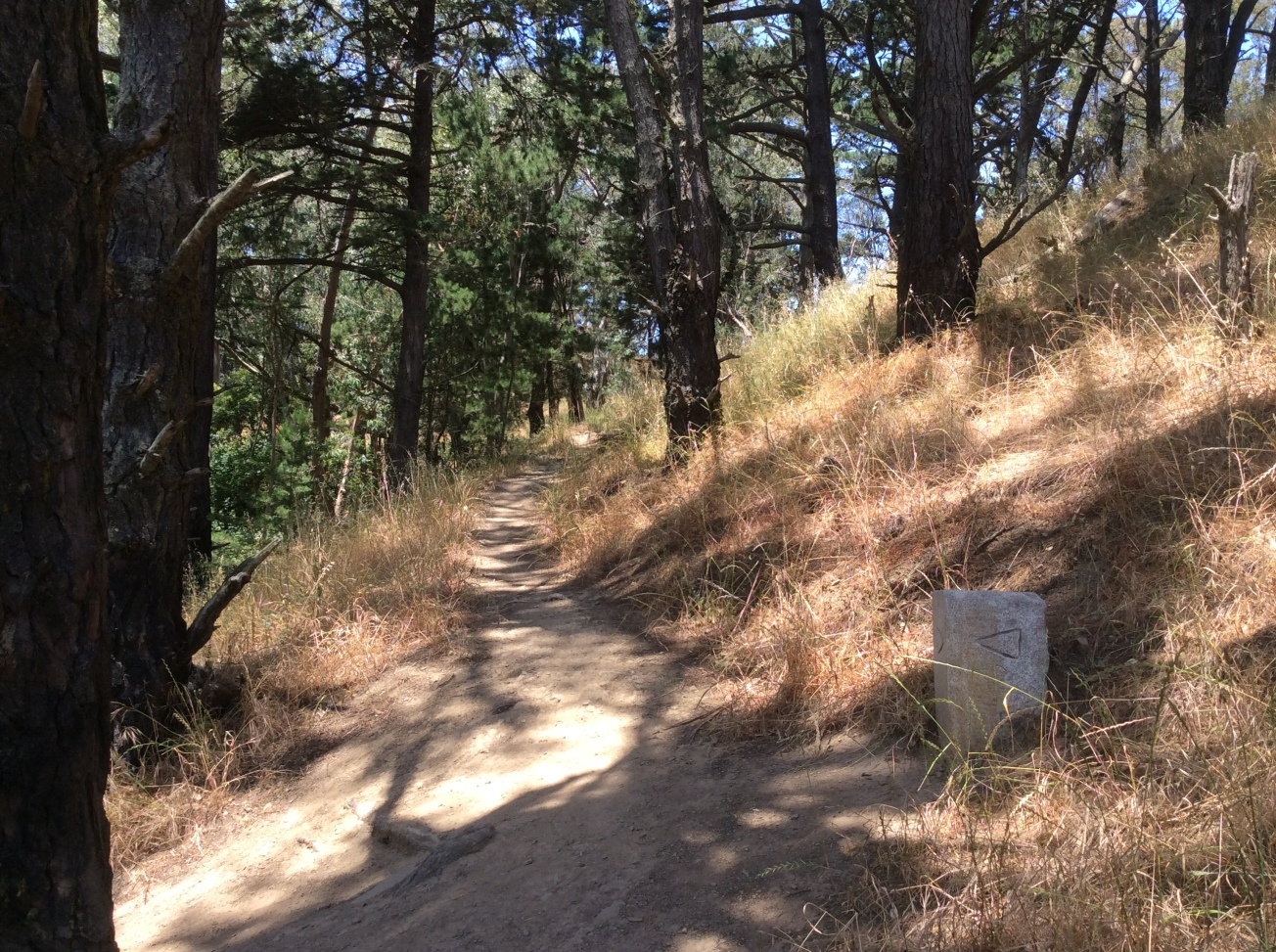 Turn in the shady path. Note the helpfully arrowed stone marker.
