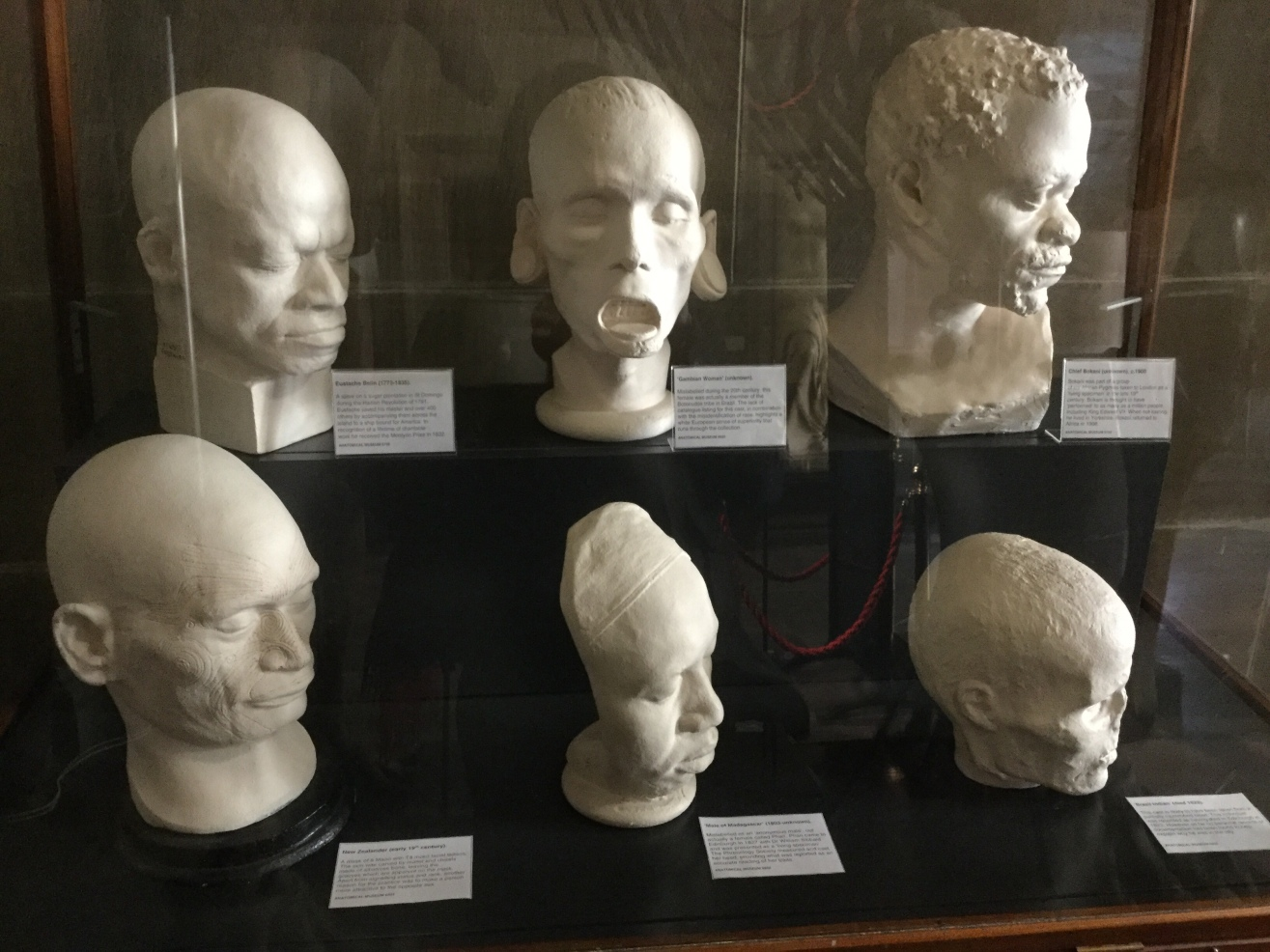 A collection of life masks from men and women of the world, Anatomical Museum collection, Old Medical School, University of Edinburgh, 2018 Amy Cools